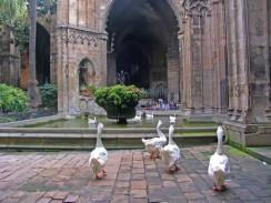 Барселонский собор. Испания