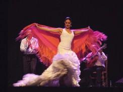 Зажигательный танец Фламенко. Испания
