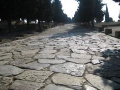 Главная улица древнего города. Севилья. Испания