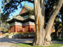 В парке Бэйхай. Пекин. Китай