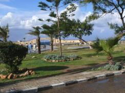 Египет. Александрия. Парк Королевского Дворца Монтазах