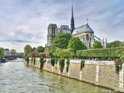 Река Сена, справа остров Сите с Собором Парижской Богоматери. Париж. Франция.