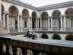 Внутренний дворик музея Брера. Милан. Италия.